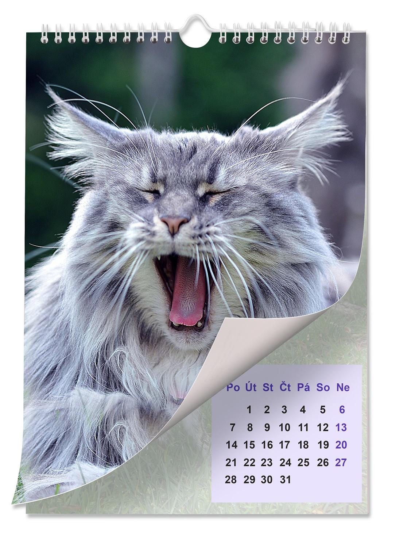 Kalendář s kočkou