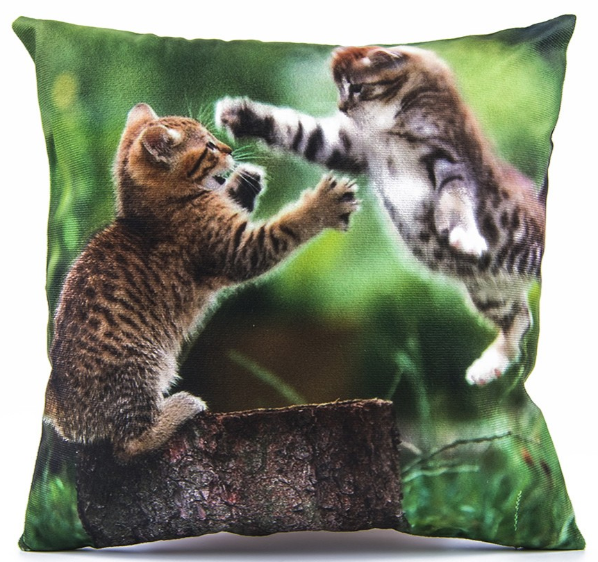 Polštář koťata