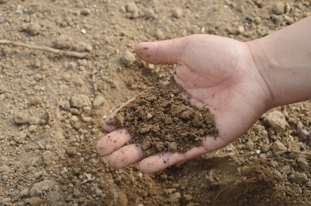 zahrada-hnojeni