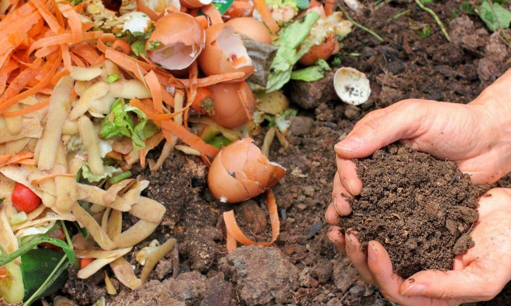 02_kompost